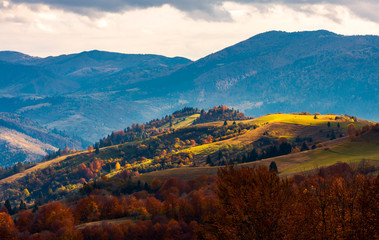 spot of light on a rolling hills. beautiful countryside in mountains. dramatic autumn weather