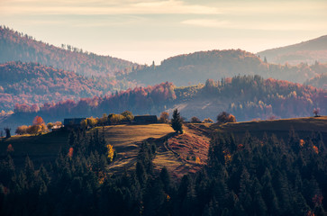village on forested rolling hill in haze. beautiful countryside scenery in mountain of Romania at sunrise