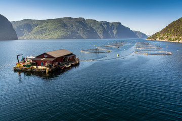Norwegian fish farm