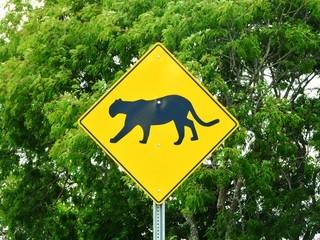 Fototapeten Puma Road sign puma