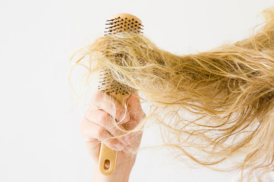 Wet, blonde, tangled woman's hair after washing on the light gray background. Hand with comb. Hair problem and solution. Daily women's issues.