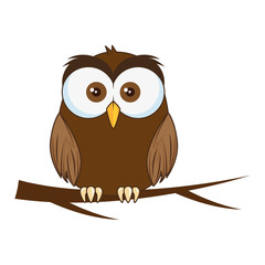 cute and adorable owl character