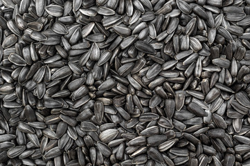 Sunflower seeds as food background. Top view. Fototapete