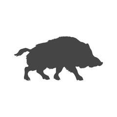 Silhouette of the wild boar icon or logo