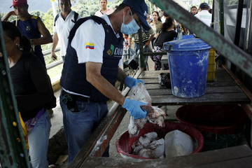 A Colombian immigration officer puts into a trash can meat seized from people trying to cross into Colombia from Venezuela through Simon Bolivar international bridge in Cucuta