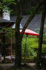 大阪箕面・滝道の野点傘のある風景