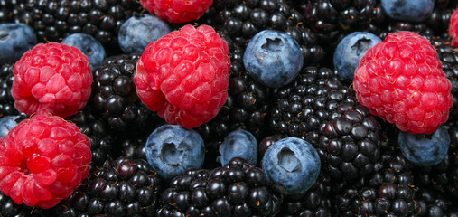 Many raspberries, blackberries, blueberries, background of berries.