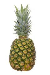 tropical summer fruit, pineapple on white background