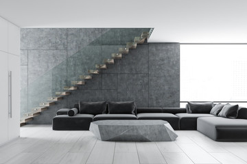 Concrete wall living room interior