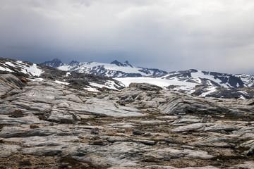 Die Wildnis von Grönland
