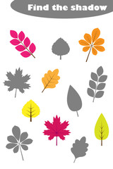 Find the shadow game with pictures of autumn leaves for children, education matching game for kids, preschool worksheet activity, task for the development of logical thinking, vector illustration