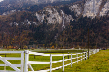 Wall Mural - in the autumn time, Switzerland