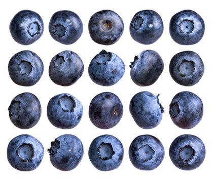 Big set of fresh blueberry isolated on white background.
