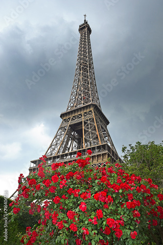 Symbol Of Paris The Eiffel Tower Paris France Stock Photo And