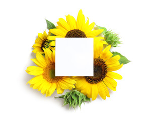 Beautiful bright sunflowers and card on white background