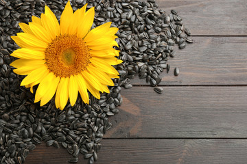 Sunflower seeds and flower on wooden table, top view
