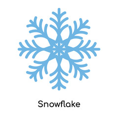 Snowflake icon vector sign and symbol isolated on white background, Snowflake logo concept