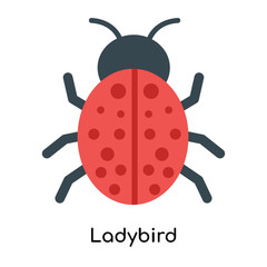 Ladybird icon vector sign and symbol isolated on white background, Ladybird logo concept