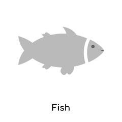 Fish icon vector sign and symbol isolated on white background, Fish logo concept
