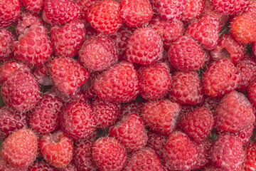 Raspberry. Fresh organic berries macro. Fruit background sweet raspberries