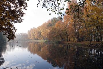 Jesień  w parku 2