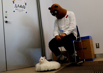 Robot cat Ballon is pictured at its photo opportunity during the Underground Maker Festival in Tokyo