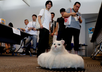 People look at robot cat Ballon which moves on the floor  at its photo opportunity during the Underground Maker Festival in Tokyo