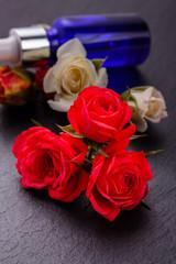Rose essential oil on a dark background