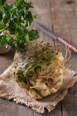 Textured celeriac root with stems on rustic background