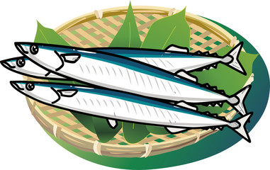 秋の味覚の秋刀魚