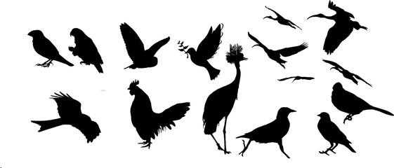 いろんな鳥のシルエット