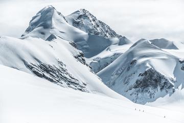 Breithorn Castor Pollux swiss peaks  Wall mural