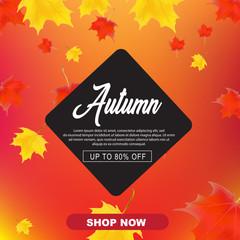 autumn sale vector illustration background