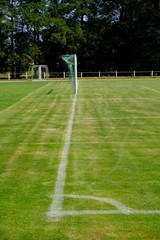 goal with line