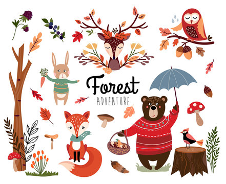 Forest element collection with autumnal background, hand drawn seasonal items isolated on white