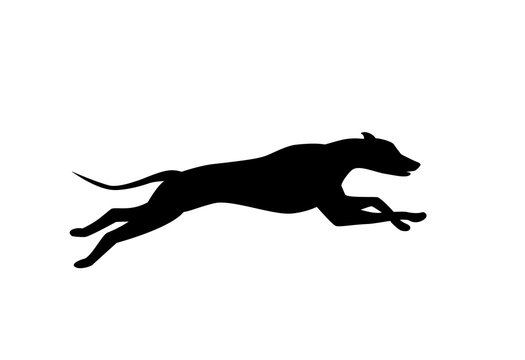 running dog silhouette in black color vector