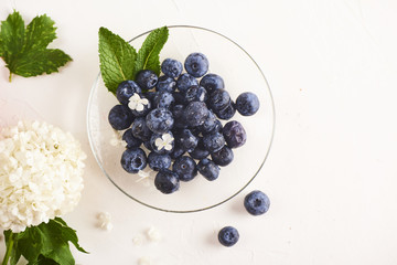 Blueberries in plate on white background