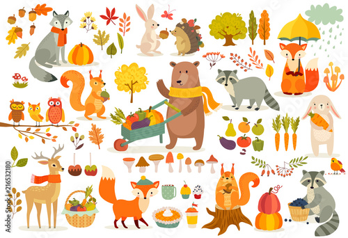 Fototapete FAll theme set, forest Animals hand drawn style.