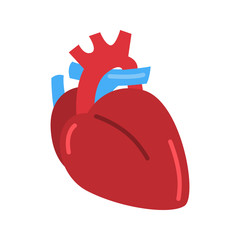 Human heart color vector icon. Flat design