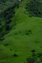 Lush green monsoon nature landscape mountains, hills, Purandar, Pune, Maharashtra, India