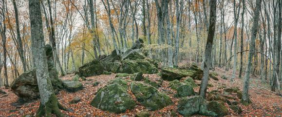Мегалиты в осеннем лесу в долине реки Дженнет, Кавказ, Россия, Краснодарский край