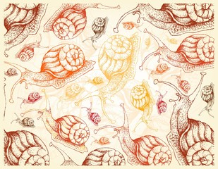 Autumn Animal, Illustration Wallpaper Background of Hand Drawn of Snails. Symbolic Animal to Show The Signs of Autumn Season.