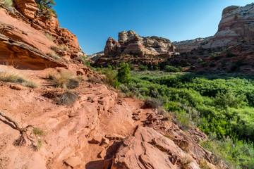 Hiking to Slot Canyon