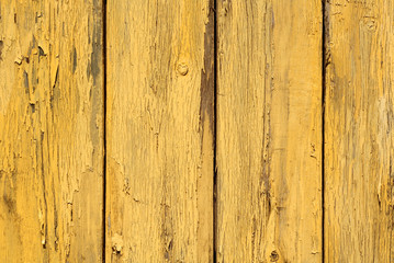 Yellow color old grunge wooden fence pattern.
