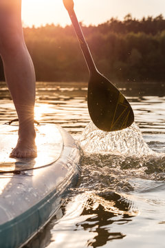 Partial view of stand up paddler at sunset