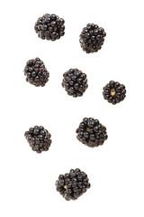 falling blackberry fruits isolated on white background