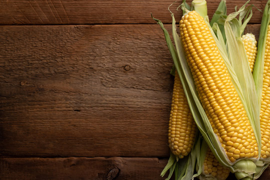 Fresh corn on cobs on rustic wooden table, closeup. Top view with copy space