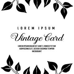 Collection of vintage card flower design vector illustration