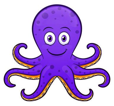 Vector octopus cartoon purple design