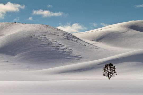 Untouched hidden valley in wintery Yellowstone National Park